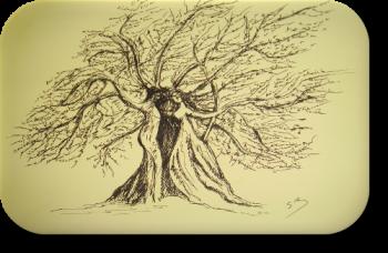arbre_logo_500x326